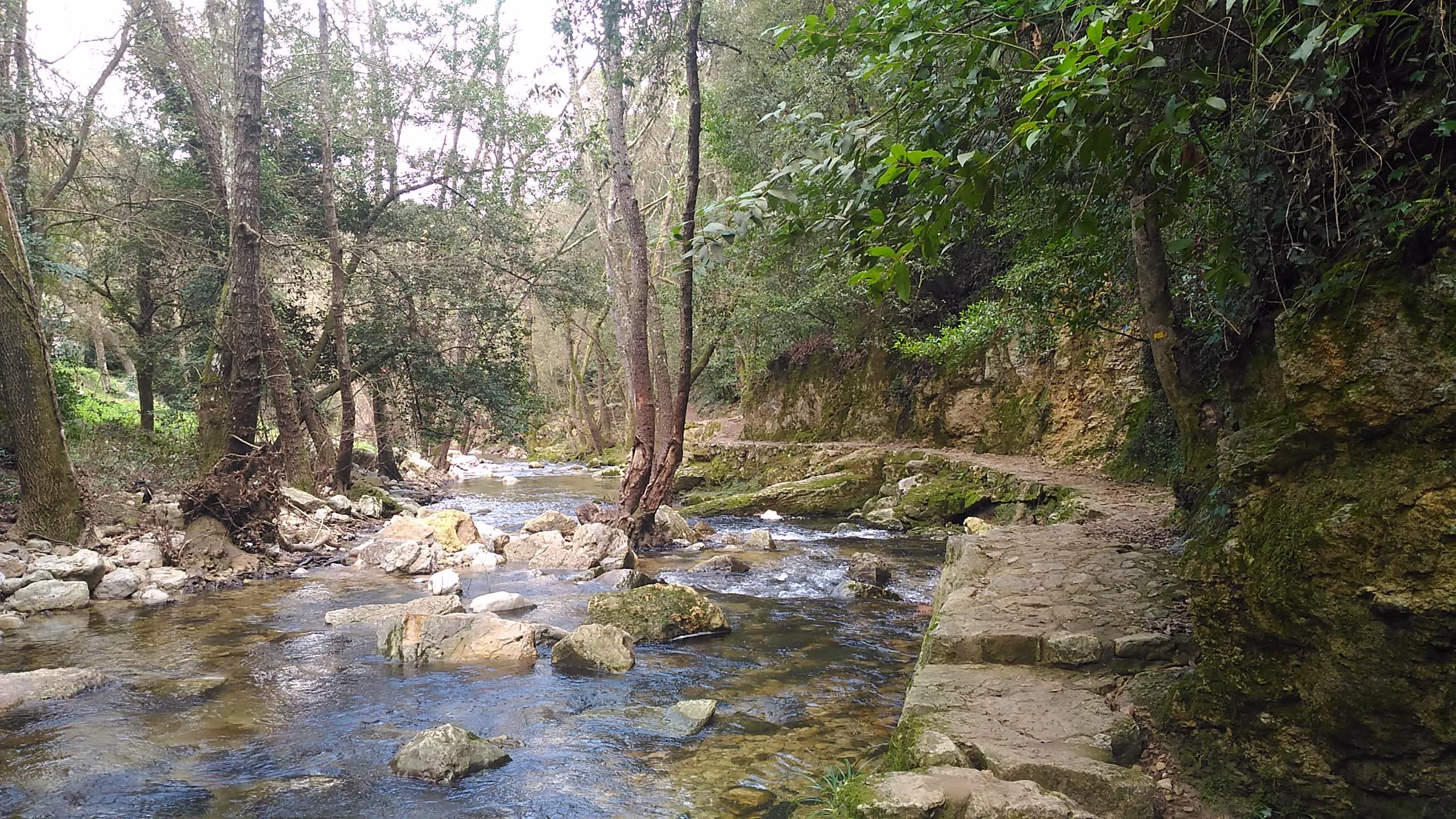 balade   pont des tamarins  u00e0 biot vers valbonne par la